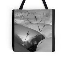 Snow Scene Tote Bag