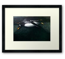 under water Framed Print