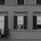 Dior's and windows by David Harris