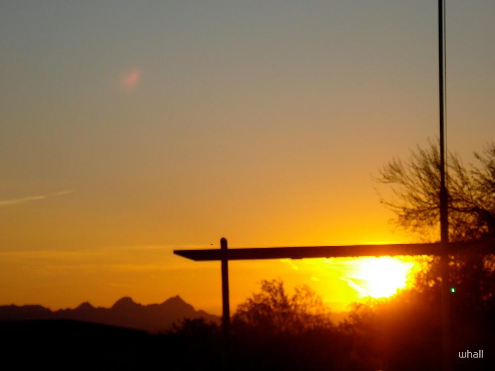 Arizona Sunset by whall