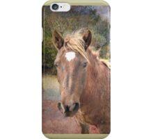 Wild Dreamer iPhone Case/Skin