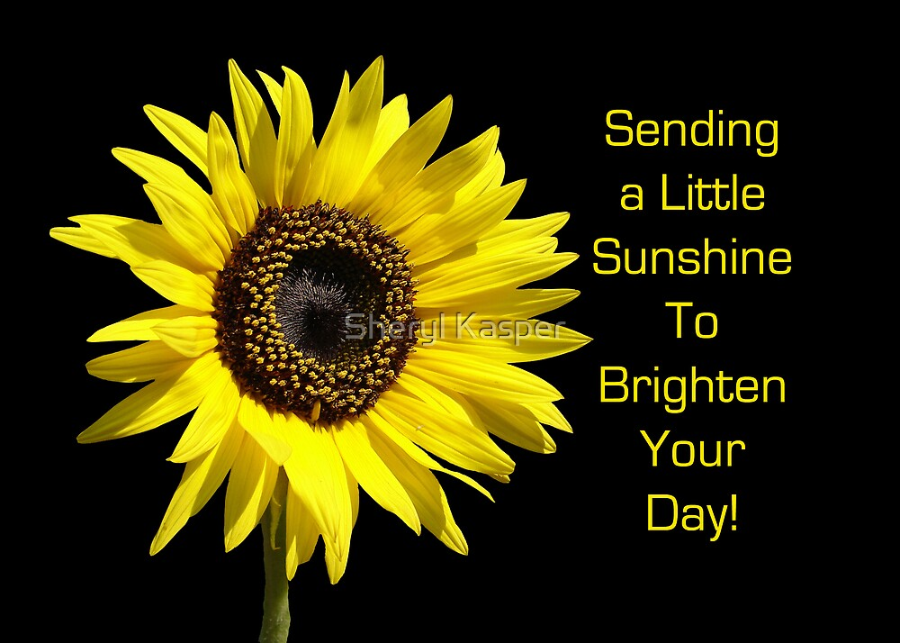 Sending You Sunshine by Sheryl Kasper