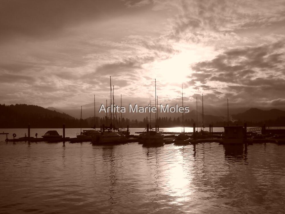 Lowell Dock at Twilight Sepia by Arlita Marie Moles