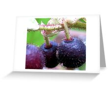 Salal Berries Greeting Card
