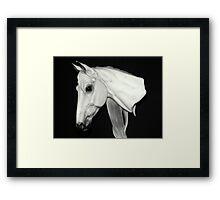 The Horse Head Bust Framed Print