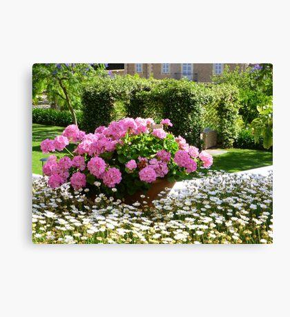 A Pot Of Pink Perfection..........................Mallorca Canvas Print
