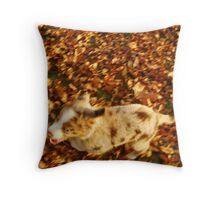 An Autum Romp Throw Pillow