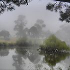 Reflections on a Grey Day  ( 1 ) by Larry Lingard-Davis