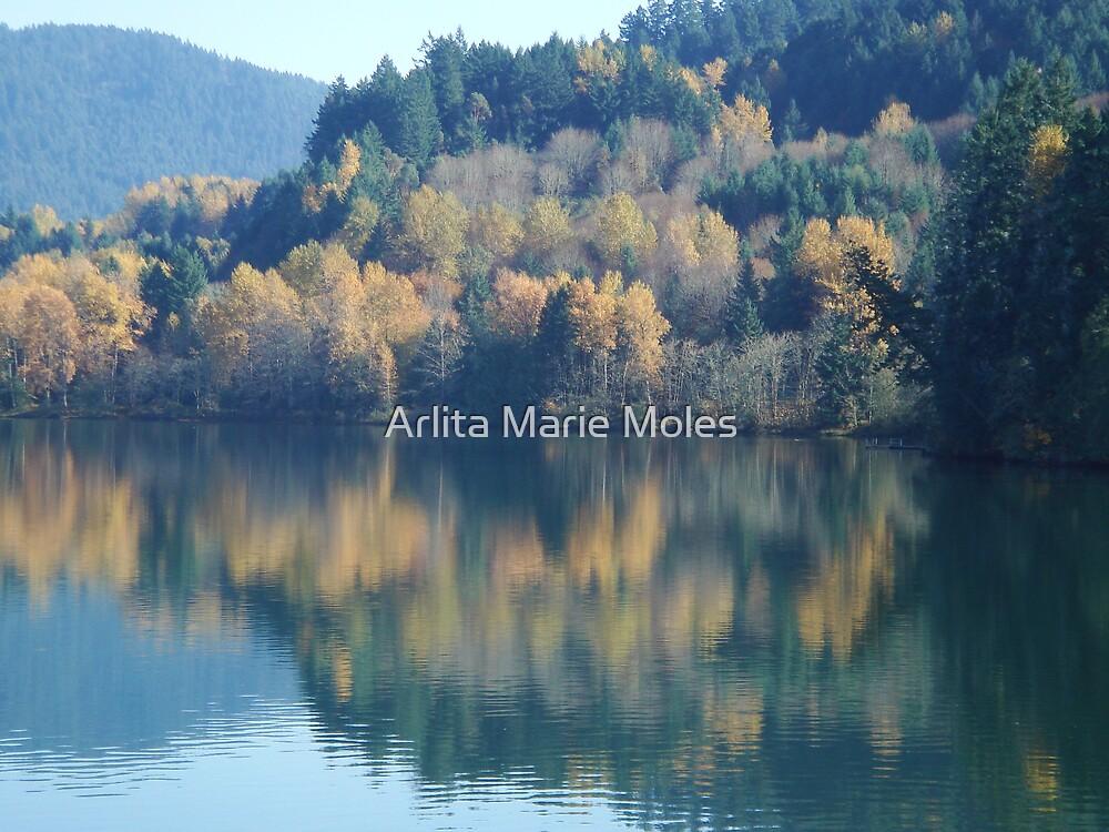 Autum Bliss by Arlita Marie Moles