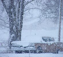 1959 Ford Fairlane on a snowy day... by DonnaMoore