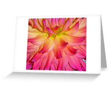 Purple-ish Petals Greeting Card