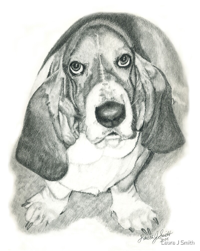 Basset I by Laura J Smith
