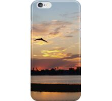 Flight through sheer pink and blue  iPhone Case/Skin