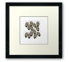 Stink Bugs Galore..Beautifully Bedazzled Bugs Framed Print