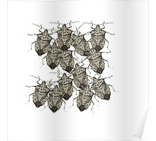Stink Bugs Galore..Beautifully Bedazzled Bugs Poster