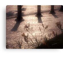 lumiere de matin Canvas Print