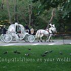 Central Park Wedding Congrats by Johanna  Rutter
