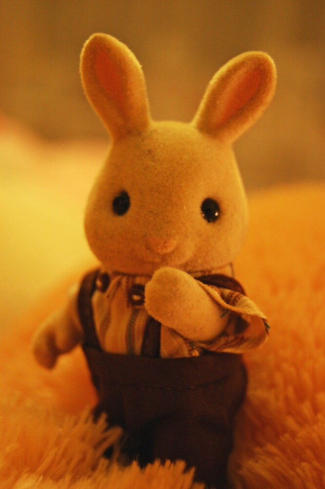 Hey Mr Bunny by silverfish