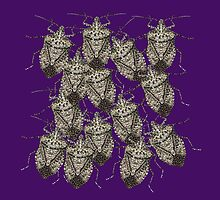 Beautiful Bedazzled Stink Bugs by Roger Swezey