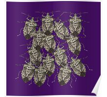 Beautiful Bedazzled Stink Bugs Poster