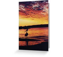 pelican silhouette Greeting Card