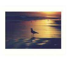 bird standing by the ocean Art Print
