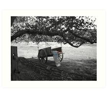 Wagon of red delicious apples Art Print