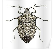 One Beautifully Bedazzled Stink Bug Poster