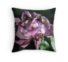 Faded Beauty Throw Pillow