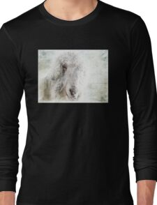 Fourth Dimension Long Sleeve T-Shirt