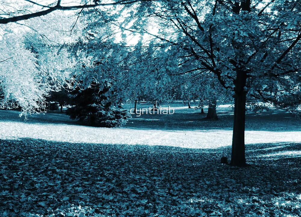 blue scenery by cynthiab