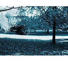 blue scenery Photographic Print