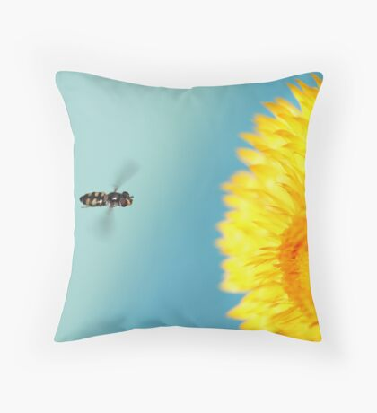 Visions Of Icarus Throw Pillow