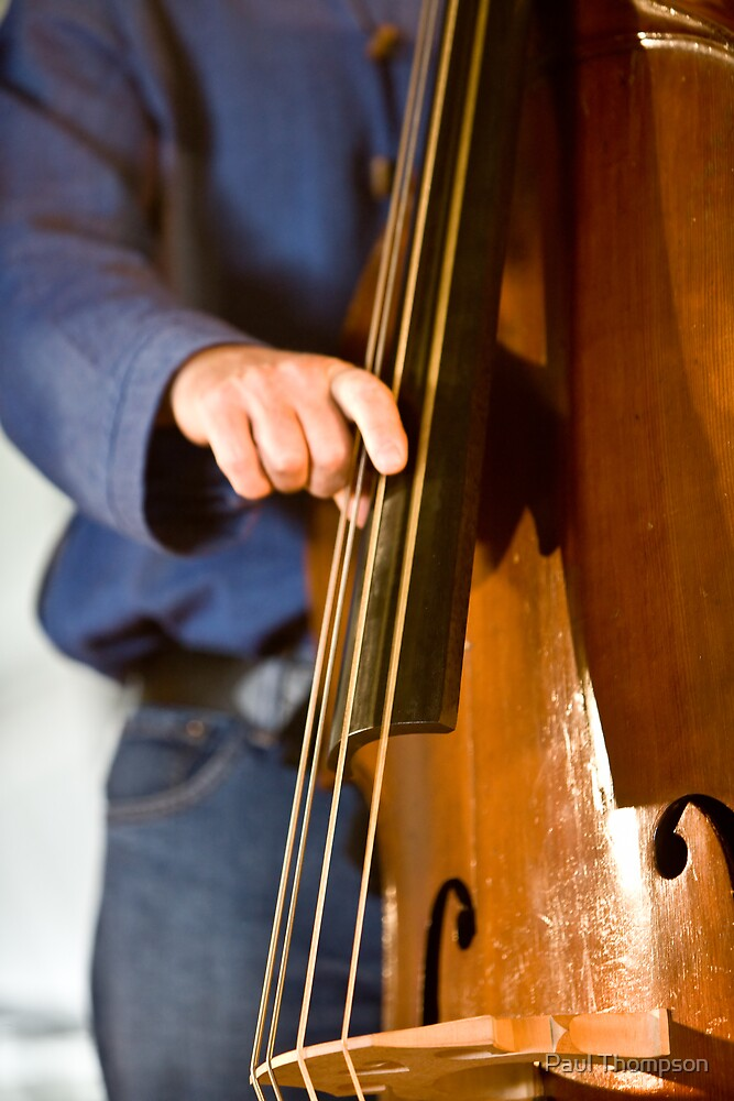 The Man with the Bass by Paul Thompson