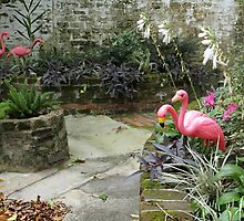 Old World with Flamingos by Carol Bailey-White