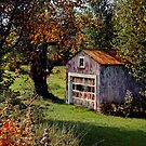 Old Barn by Annette Blattman