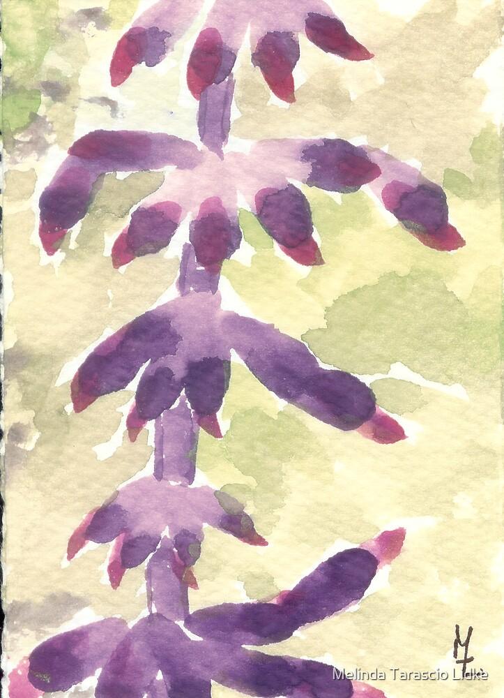 Beauty in Purple Watercolor 153 by Melinda Tarascio Lidke