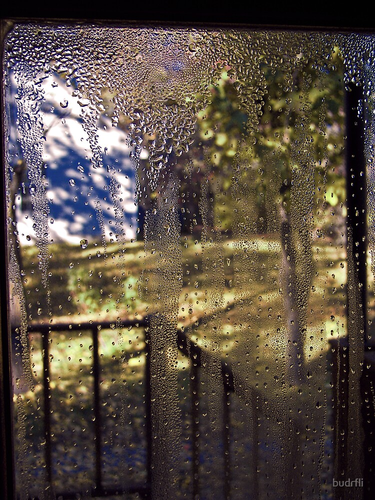 window pane by budrfli