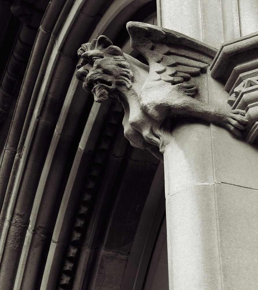 Gargoyle Above by Owen McGann