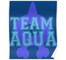 Pokemon - Team Aqua Poster