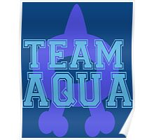 Pokemon - Team Aqua Poster