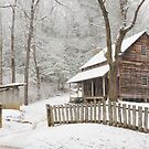 Tipton in winter by dc witmer