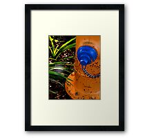 Water and Sunlight Framed Print
