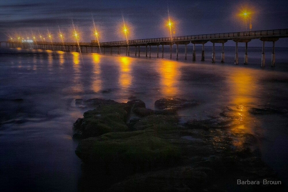 Sea Lights by Barbara  Brown