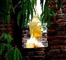 Framed Buddha by Dave Lloyd
