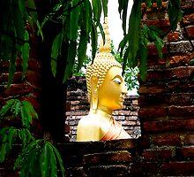 Framed Buddha by Dave Lloyd