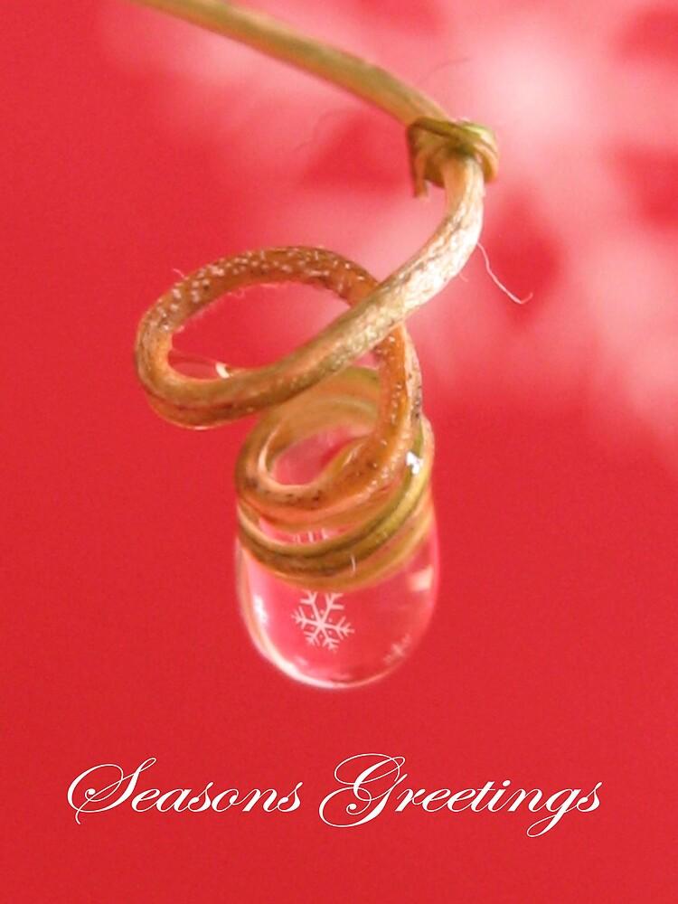 Seasons Greetings by Sara Wiggins