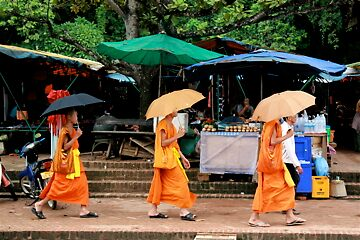 Monks on the Go by kaid