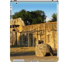 Historic Spanish Missions iPad Case/Skin