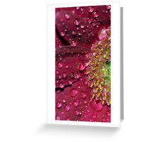 Glitterati Greeting Card